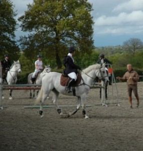 accueil_centre_equestre