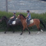 cours_20062012_014
