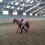 pony_games_vitre_005
