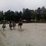 pony_games_vitre_013