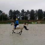 pony_games_vitre_015