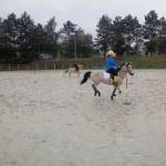pony_games_vitre_016