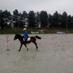 pony_games_vitre_017