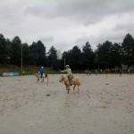 pony_games_vitre_022