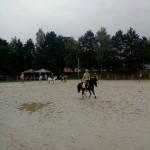 pony_games_vitre_023