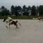 pony_games_vitre_024