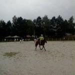 pony_games_vitre_026