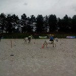 pony_games_vitre_038