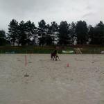 pony_games_vitre_040