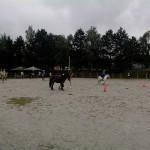 pony_games_vitre_042