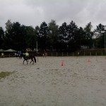 pony_games_vitre_044