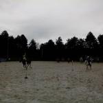 pony_games_vitre_049