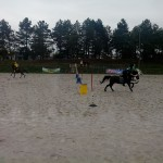 pony_games_vitre_058