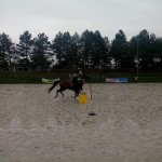 pony_games_vitre_061