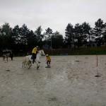 pony_games_vitre_068