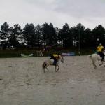 pony_games_vitre_069