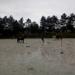 pony_games_vitre_070