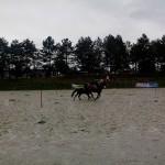 pony_games_vitre_072