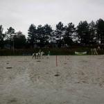 pony_games_vitre_073