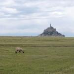 Random image: 2015-07-19 au 25 Randonnée De la Bretagne romantique au Mont-Saint-Michel 091