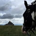 Random image: 2015-07-19 au 25 Randonnée De la Bretagne romantique au Mont-Saint-Michel 097