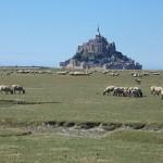 Random image: 2015-08-16 au 22 Randonnée De la Bretagne romantique au Mont-Saint-Michel 34